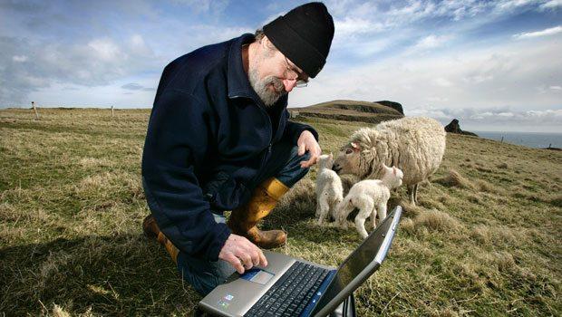 Que banda ancha es mejor
